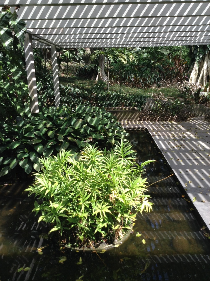 Shadows in covered area of the garden of Roberto Burle Marx