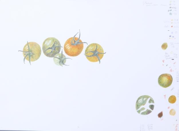 Perky Tomatoes