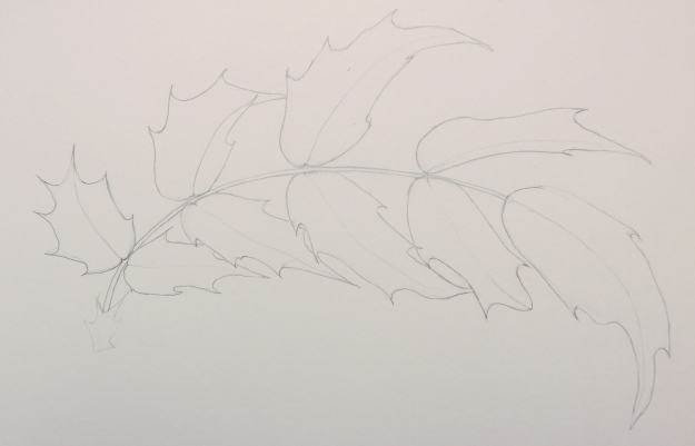 35 - Mahonia leaf