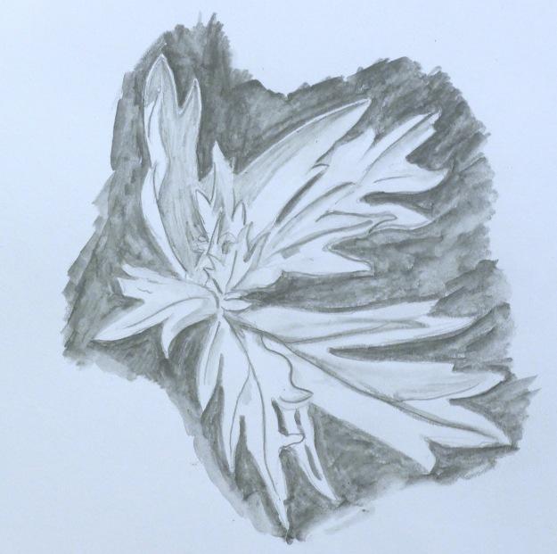 112 - Leaf