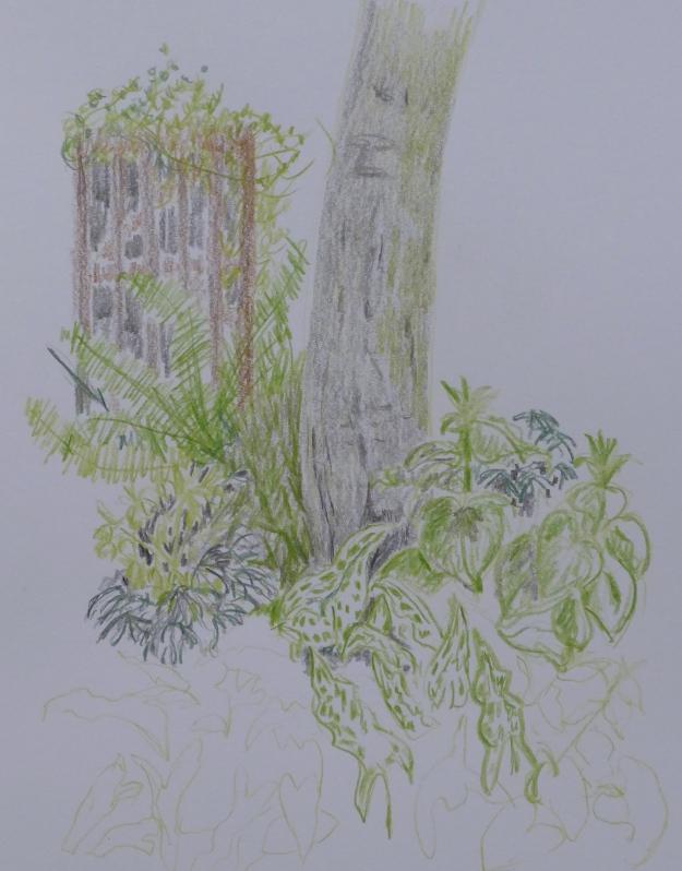 97 Corner of the garden