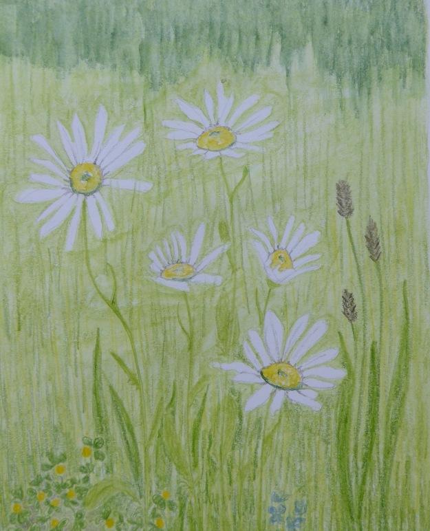 168 Meadow
