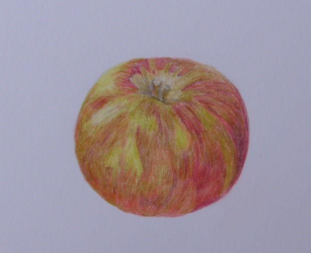 269 Apple