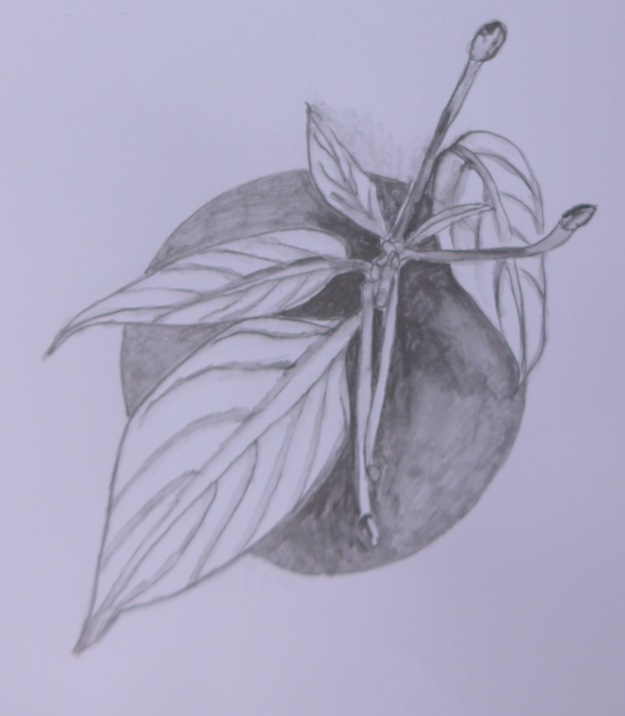294 Bizzy Lizzy leaf design